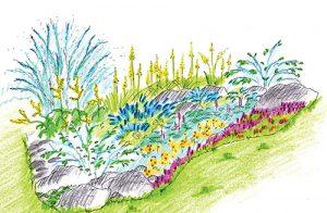Kombinace rostlin na záhonu