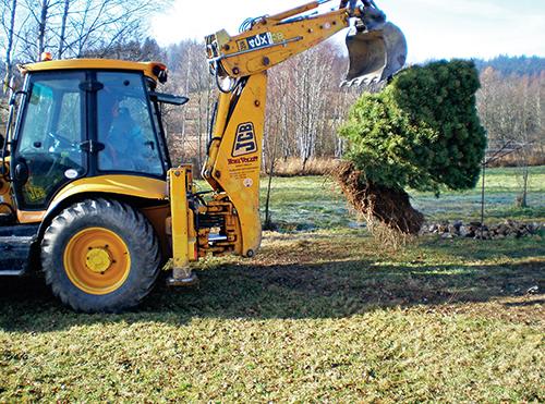Někdy se stane, že je potřeba přesadit větší nebo již vzrostlý strom, který je škoda porazit.