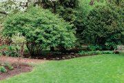 Odolnost trávníku proti plísním posiluje i vyšší obsah síry a dalších stopových prvků.