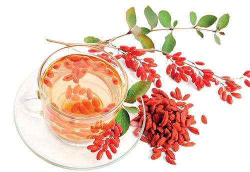 Plody kustovnice se používají nejčastěji do čaje.
