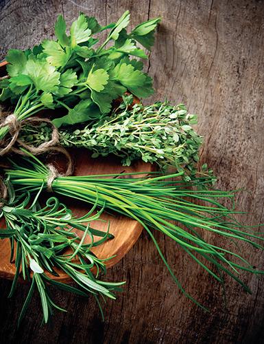 Od jara do podzimu můžete v kuchyni využívat čerstvé zelené bylinky z vlastní zahrádky nebo balkonu.