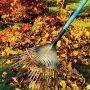 Spadané listí rozhodně nevyhazujte, dobře poslouží při stavbě ježčích zimovišť.