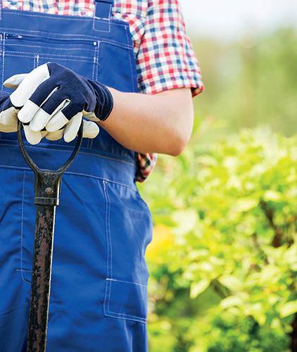 Základními nástroji pro přípravu půdy rytím jsou rýč a rycí vidle.