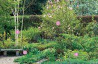 Začátek jara, to jsou narašené pupeny a čerstvá zeleň.