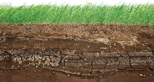 Vlastnosti půdy lze měnit jen omezeně.