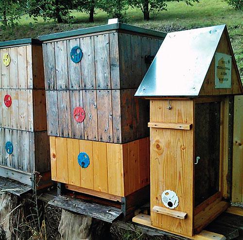 Včelstva včelařského kroužku Vyšehradských včelaříků v pražské botanické zahradě