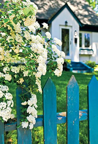 Důležitým parametrem každého plotu je jeho výška.