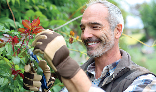 Jarní řez udrží růže v kondici a zaručí bohatou násadu velkých květů.