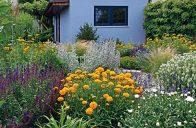 Vybrané rostliny barevně ladí s novou fasádou dílny a působí harmonickým dojmem.