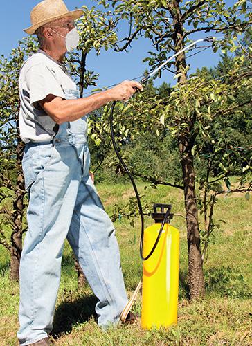 Pravidelná rutinní péče udržuje keře a stromy v dobrém stavu a zlepšuje i jejich zdravotní kondici a odolnost.