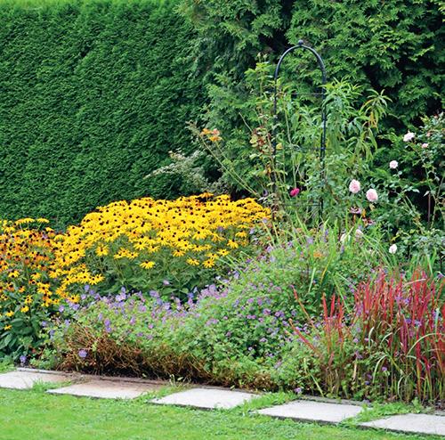 Trvalkový záhon propůjčuje zahradě od poloviny léta barvy, které jí před obnovou tak zoufale chyběly.