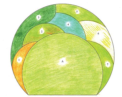 Návrh trvalkového záhonu s rostlinami se zajímavou barvou a strukturou listů