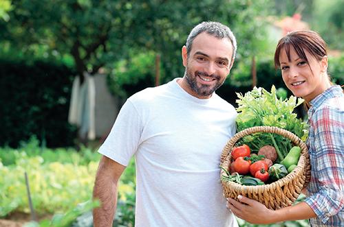 Kromě živin jsou některé zeleninové druhy náročné i na organickou hmotu v půdě.