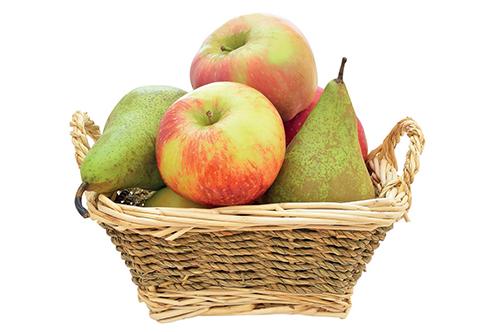 Sladké a šťavnaté ovoce láká ve velké míře i vosy.
