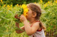 Naučte své děti úctě k přírodě.