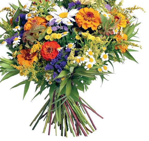 Máte-li tvořivou náladu, je červenec nejlepším obdobím pro vytváření kytic, které ozdobí kuchyň na chalupě, stůl na terase i zahradní party.