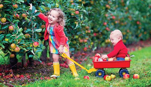 Léto je tady, prázdniny za rohem a hodně dětí se zanedlouho rozjede na venkov, chalupu nebo za babičkou.