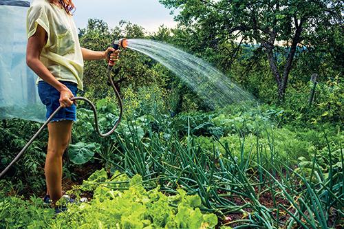 Čerpadlo poslouží nejen pro čerpání vody na zálivku zahrady.