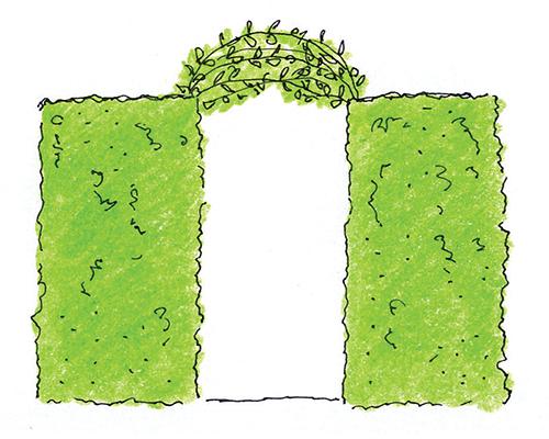 Svázání výhonů zahradnickým provázkem