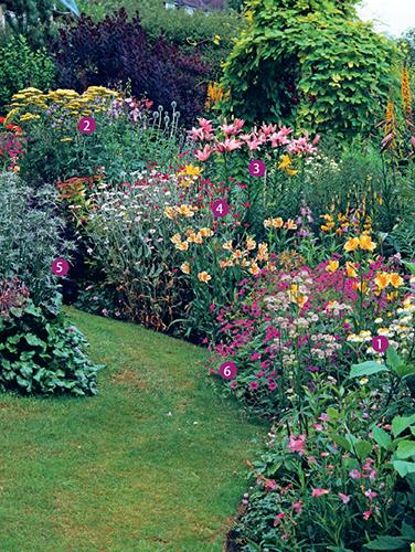 V čase prázdnin jsou zahrady v plném květu. Právě nyní je nejlépe vidět, jak se trvalkový záhon povedlo vytvořit.