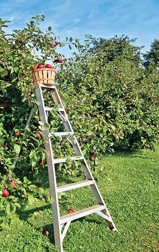 Opěrná výška je jeden ze základních parametrů žebříku.
