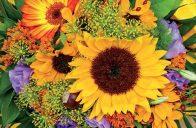 Konec léta se nenávratně blíží. I tak ale máte možnost si do kytice vybrat mnoho zajímavých květin