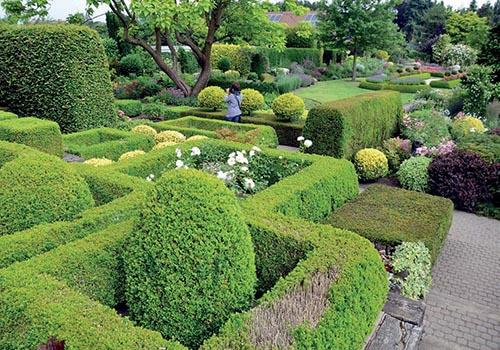 Celkový pohled na zahradu ve směru od domu.