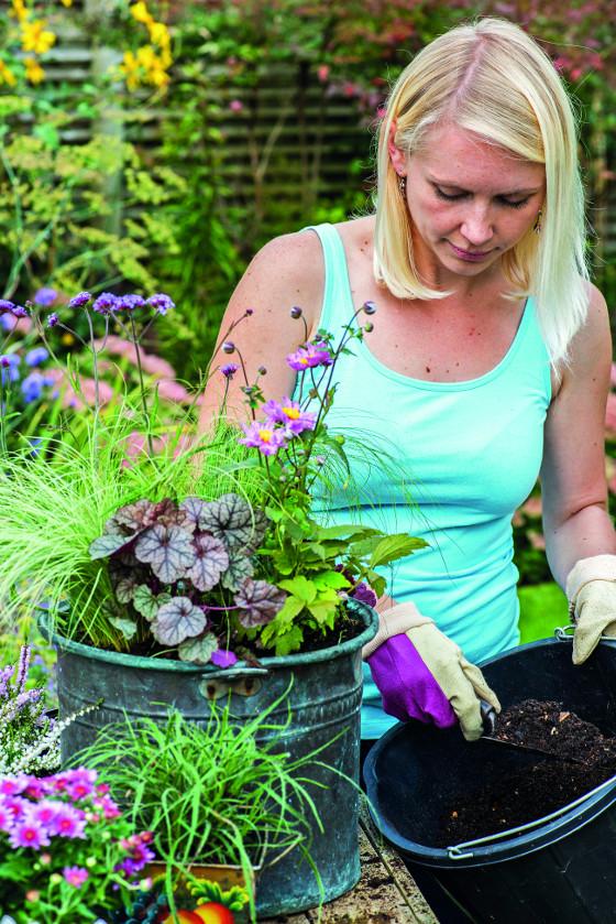 Kvalitní kompost poskytne rostlinám všechny potřebné živiny.