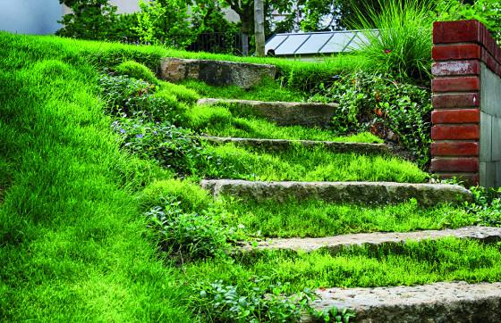Na každém pozemku můžete využít recyklované materiály: například staré kamenné schody.