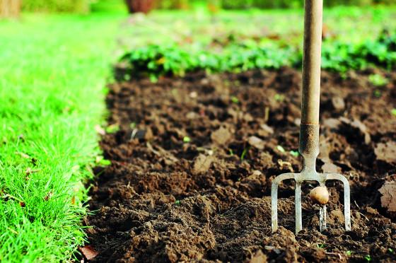 Rycí vidle jsou univerzálním nářadím, přeházíte jimi kompost i naberete kupky trávy.