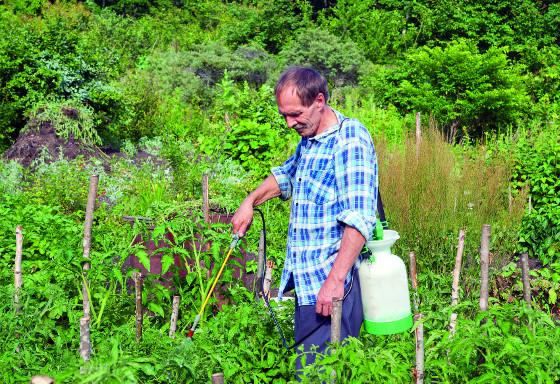 Postřikovače v zahradě použijete velmi často, hodí se k ošetřování rostlin, stromů i hubení škůdců.