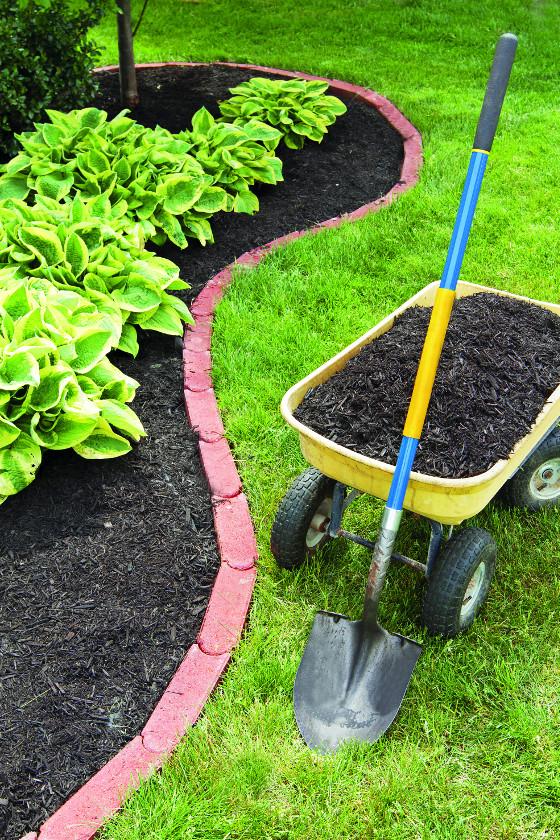 Kvalitní substrát vám pomůže vytvořit si zahradu podle vlastních představ.