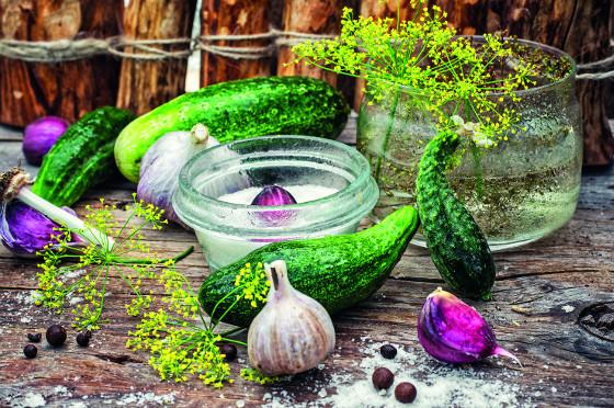 Možností, jak uchovat sklizeň zeleniny, máte několik.