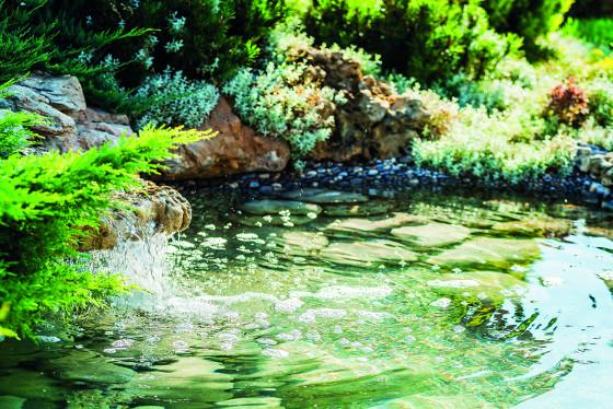 Přefiltrovanou vodu lze do jezírka vracetpřes vodopád, zároveň se tak okysličuje
