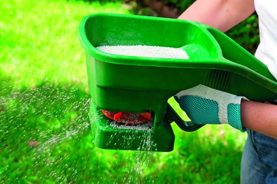 Obnova zanedbaného trávníku se neobejde bez pravidelného přísunu živin