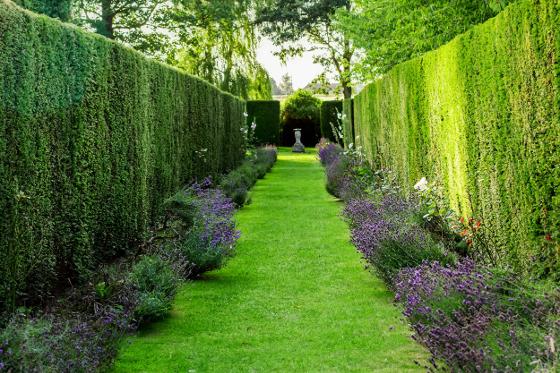 Zahradu opticky zvětší rozčlenění do několika funkčních celků.