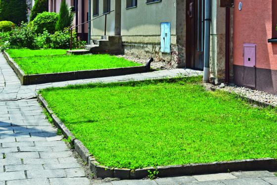 Současná podoba předzahrádky, kde je založený na péči náročný trávník.