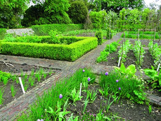 Užitkovou zahradu nemusíte nutně izolovat od okrasné části. Bude-li u domu, častěji si dojdete pro čerstvou zeleninu či bylinky.