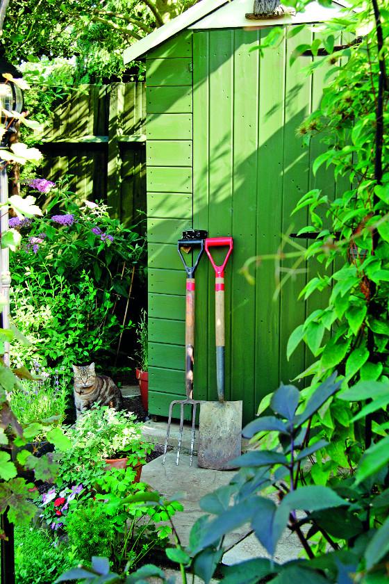 Zvlášť před kočkami nejsou v bezpečí ani jedy a chemické látky zamčené v zahradním domku nebo skladované ve výškách.