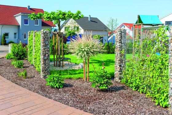 Skvělým doplňkem zahrad jsou tzv. zelené gabiony, kdy část košů zůstane volná a necháte skrz ně prorůstat rosltiny.