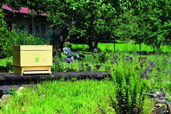 Vedle záhonů nechybí úly pro hmyzí opylovače