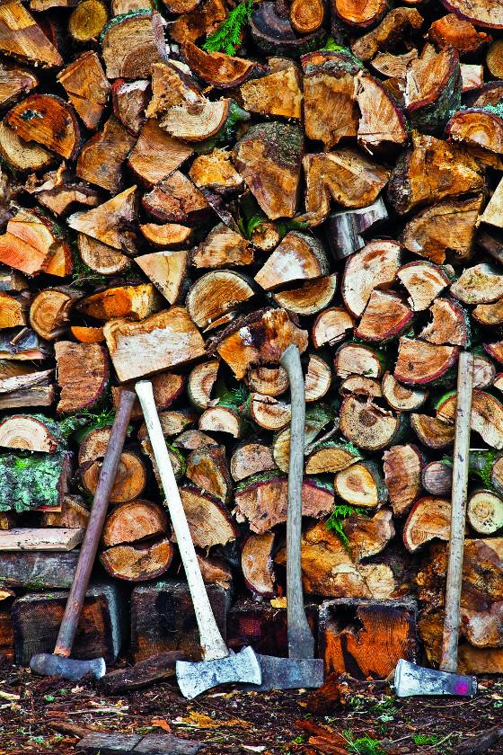 Jak si vybrat ideálně sekeru? Nejprospěšnější je pokud zvolený typ má někdo v okolí, můžete si ho půjčit a pár hodin s ním venku štípat dřevo.