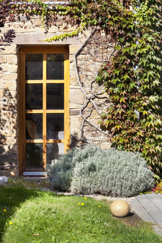 U kamenné stěny se daří bylinkám i pnoucímu přísavníku.