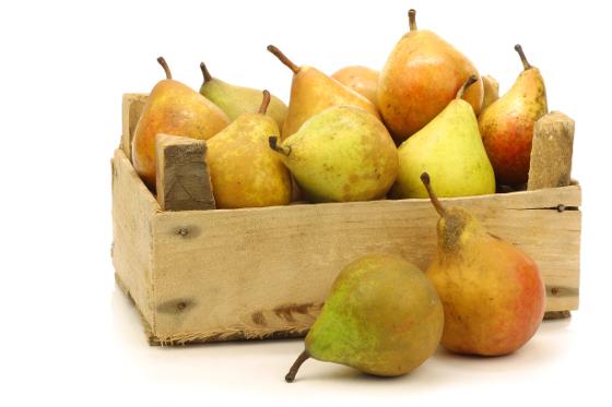ovoce7