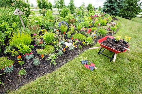 Zachov vejte dostate n rozestupy fl ra na zahrad for Organiser sa terrasse