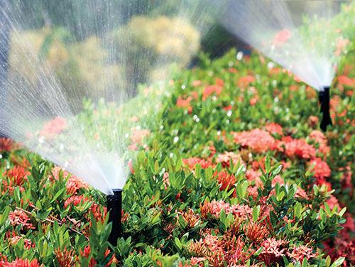 Sblížící se zimou a klesající teplotou je nutné zazimovat automatický závlahový systém.