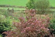 V okrajových částech zahrada poměrně plynule přechází do krajiny a v některých místech nabízí daleké výhledy do okolí.