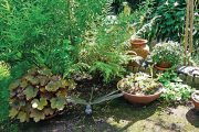 Koutek se suchovzdornými rostlinami v nádobách hlídá plastika vážky.