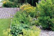 Na záhonech kolem terasy u kuchyně roste půvabná magnólie, kontryhel a stálezelený skalník Dammerův. Květenství okrasné třtiny ostrokvěté pěkně kontrastuje se svěží zelení tisů.