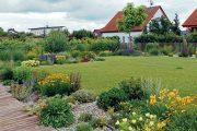 Na třetí fotografii je v pozadí vidět budoucí dominanta zahrady – katalpa trubačovitá.